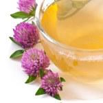 Herbal tea leaf clover — Stock Photo #30114281