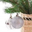 Christmas ball and green spruce branch, isolated white background — Stock Photo