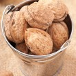 Bucket with walnuts — Stock Photo