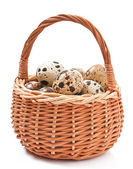 Quail eggs in a wicker basket isolated on white background — Stock Photo