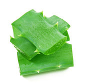 Aloe vera leaf and slices isolated on white background — Foto de Stock