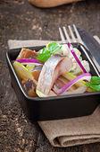 Sleďový salát s cibulí a zelené jablko — Foto de Stock