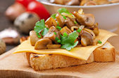 Toast sandwich with mushroom, cheese and parsley, selective focus — Stock Photo