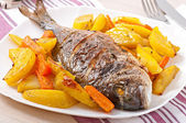 Dorada baked with potatoes — Stock Photo