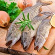 Pike raw fish preparation to baking in the kitchen — Stock Photo #44475833