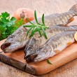 Pike raw fish preparation to baking in the kitchen — Stock Photo #44475837