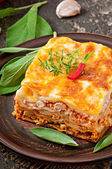 Italian meat lasagna — Stock Photo