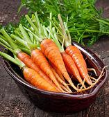 群的新鲜胡萝卜 — 图库照片