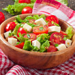 Tomato salad with lettuce, cheese and mustard and garlic dressing — Stock Photo #50812487