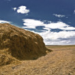 Haystack2 — Stock Photo #12235175