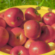 Apples — Stock Photo #13153647