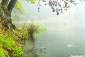 Fog over water — Stock Photo