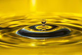 Gouden drop — Stockfoto