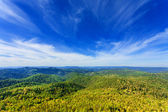 Mountains with green forest landscape — Stock Photo