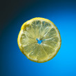 Slice of lemon on blue — Stock Photo