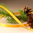 Twig of evergreen fir and cone with ribbon — Stock Photo