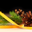 Twig of evergreen fir and cone with ribbon - Stock Photo