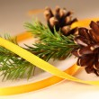Twig of evergreen fir and cone with ribbon — Stock Photo #16637485