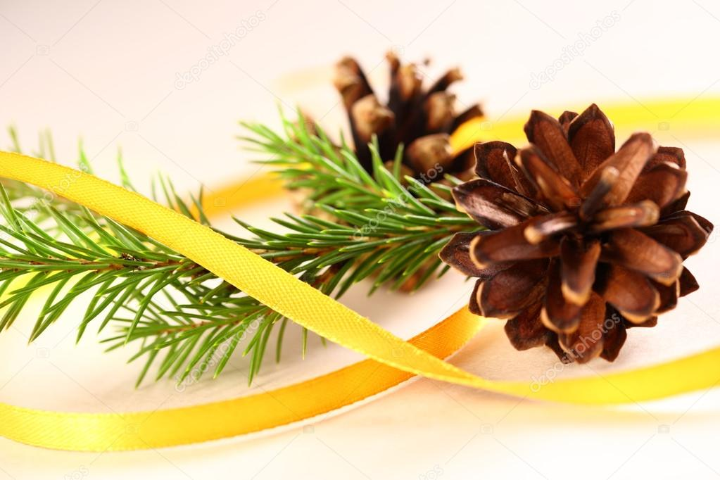 Twig of evergreen fir and cone with ribbon  Stock Photo #16637473