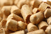 Wooden pellets closeup — Stock Photo