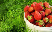 Ripe strawberry in basket on grass — Stok fotoğraf