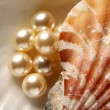 Stock Photo: Scattering white pearls in seashell on pebbles