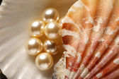 Scattering white pearls in seashell on pebbles — Stock Photo