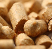 Wooden pellets closeup background — Stock Photo