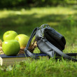 Book, apples and bag on green grass — Stock Photo