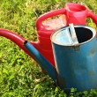 Stock Photo: Old watering cans on grass