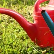Old watering cans on grass — Stock Photo