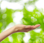 Female hand on young green leaves background — Stock Photo