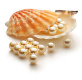 Scattering white pearls in seashell — Stock Photo