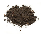 Handful of soil — Stock Photo