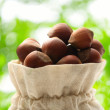 Fresh hazelnuts in sack — Stock Photo