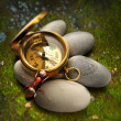 Ant, compass and sea stones — Stock Photo