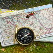 Compass, ant and map — Stock Photo