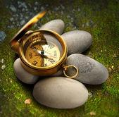 Compass and sea stones moss — Stock Photo