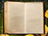 Book on autumn moss ground — Stock Photo
