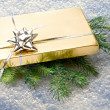 Gift with green fir — Stock Photo #37488271