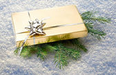 Gift with green fir — Stock Photo