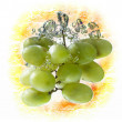 Green grape — Stock Photo #38082841