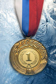 Medal on ice — Stock Photo