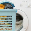Stock Photo: Basket full of clothes and washer