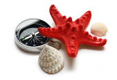 Compass, seastar and seashells — Stock Photo
