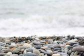Pebble Seashore — Stock Photo