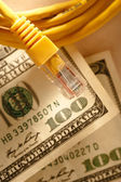 Ethernet cable and dollars — Stock Photo