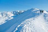 Walk the Tatra peaks. — Stock Photo