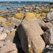 Coast of Bornholm — Foto Stock