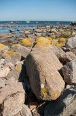 Coast of Bornholm — Stock Photo